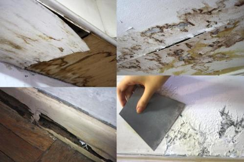 water damage termite infestation chipping paint