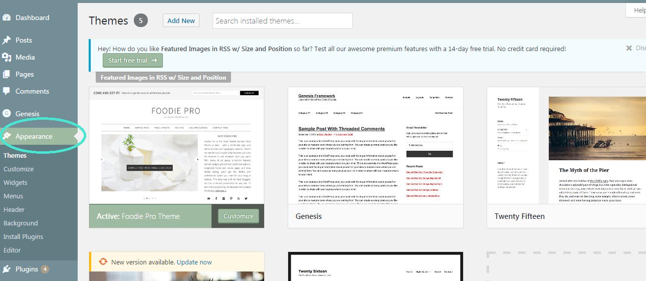 Wordpress apperance theme foodie pro