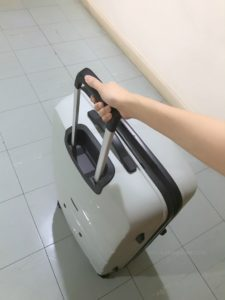 luggage travel moving overseas