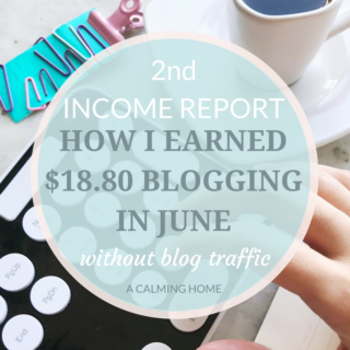 2nd blog income report