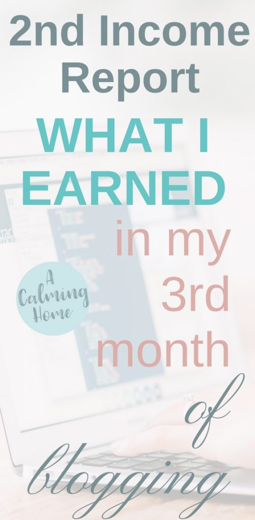 2nd income report shows my earnings from my 3rd month of blogging