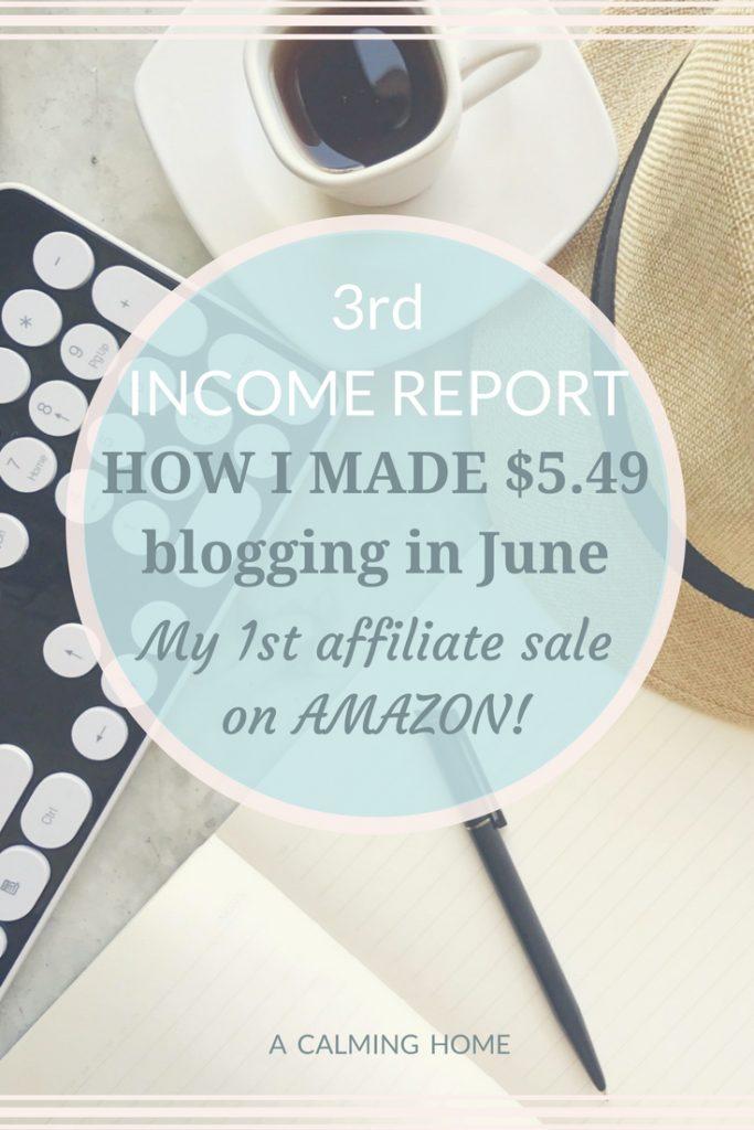 first amazon affiliate sale income report