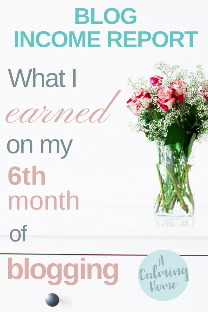 6th month of blogging income report (1)