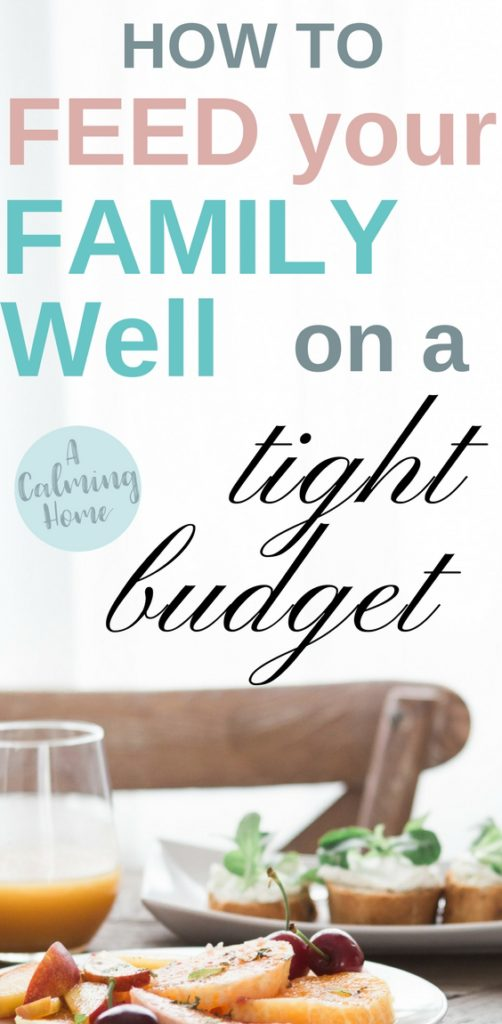 how to feed your family well on a tight budget