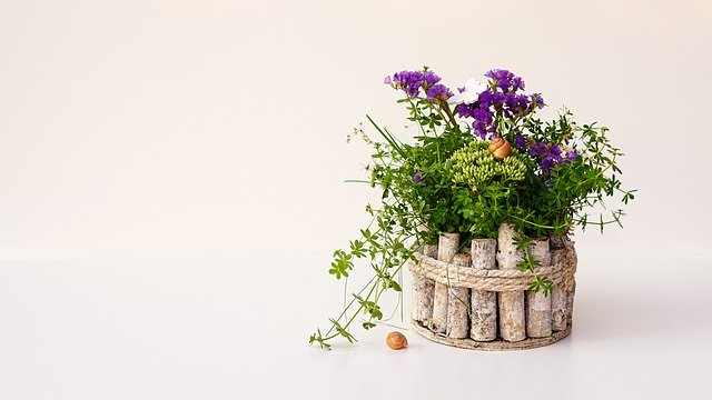 How To Cover Plastic Plant Pots, How To Make Outdoor Plastic Plant Pots Look Nice
