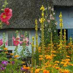 What is a Cottage Garden?
