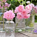 12 Reasons why Rose essential oil is expensive